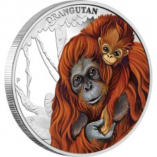 ORANGUTAN 2014 1/2OZ SILVER PROOF COIN